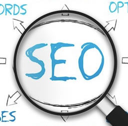 Who should be responsible for SEO in your business?