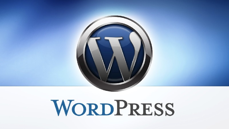 WordPress and Hosting- Your Best Options